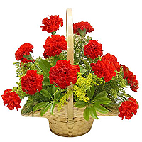 12 Carnations Basket / Vase