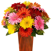 Charming Arrangement of Assorted Flowers for the Valentine