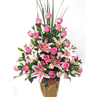 Unique Dreamland Carnation of Multi-Shaded Roses with Vase