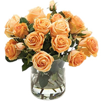 Expressive Flame of Love Peach Roses Bouquet