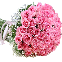 Dazzling 49 Long-Stemmed Pink Roses, with Special 1 Long-Stemmed White Rose