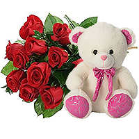 Stunning Bunch of Twelve Premium Long Stemmed Red Roses with a Teddy