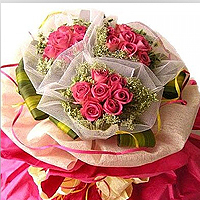 25 Long Stemmed Pink Roses Arranged Exclusively as THREE Bouquets