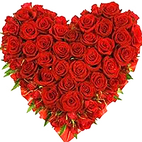 Ravishing Bouquet of Bright Red Fiery One Hundred and Fifty Long Stemmed Roses Arranged Exclusively